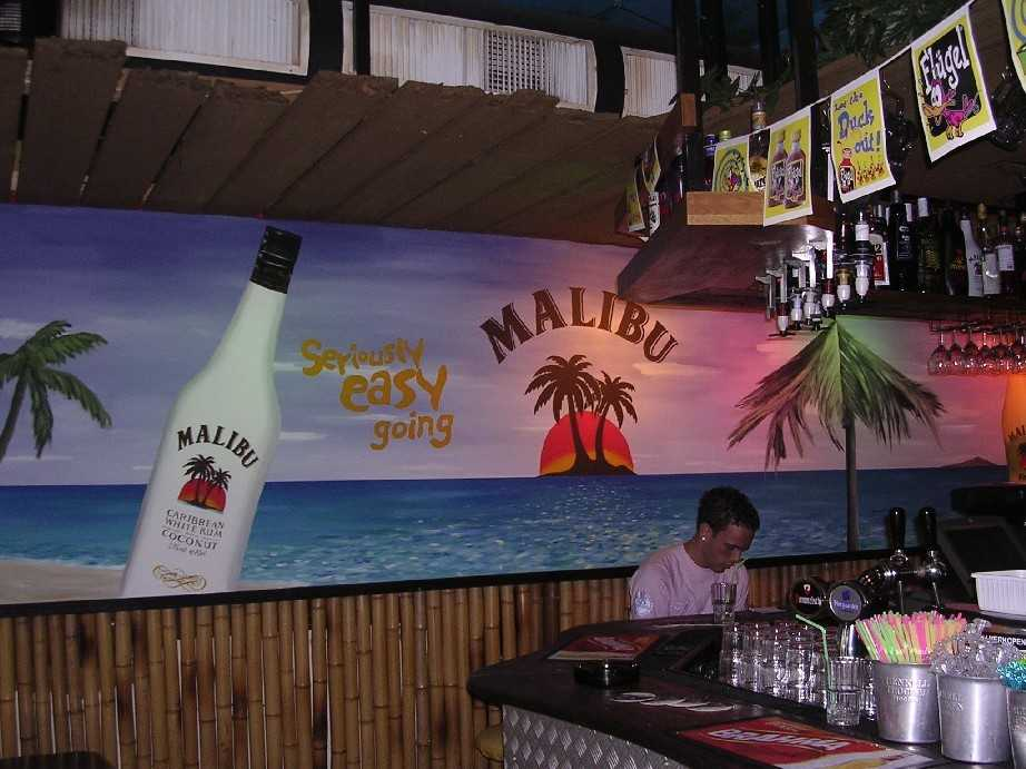DecorationFactory-coconuts
